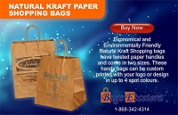 Bags Etcetera Paper Bags Manufacturing Natural Kraft Shopping Bags